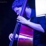 illus_orchestra_71
